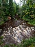 森林在夏天包围的山河 库存照片