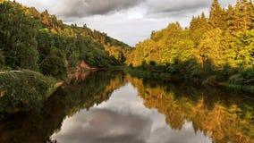 森林在日落的河和秋天树 免版税库存图片
