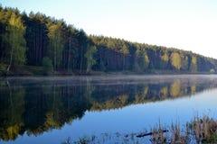 森林在森林湖的镇静大海被反射 在美丽的鸟云彩之上颜色及早飞行金子早晨本质宜人的平静的反映上升海运一些星期日 免版税库存照片