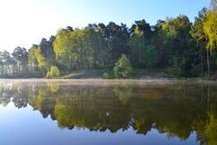 森林在森林湖的镇静大海被反射 在美丽的鸟云彩之上颜色及早飞行金子早晨本质宜人的平静的反映上升海运一些星期日 库存照片