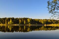 森林在森林湖的镇静大海被反射 在美丽的鸟云彩之上颜色及早飞行金子早晨本质宜人的平静的反映上升海运一些星期日 免版税库存图片
