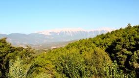 森林在金牛座山的背景中 免版税库存图片