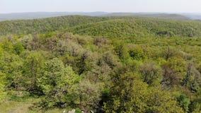森林地区- Macin山-罗马尼亚,多布罗加 股票录像