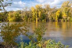 森林地在沿明尼苏达河的秋天 库存图片