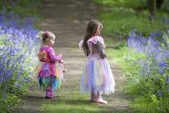 森林地步行的两个孩子在春天 免版税图库摄影