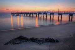 森林地海滩捕鱼码头黎明 库存照片
