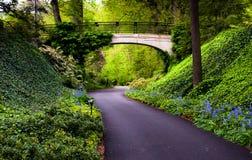 森林地道路在Longwood庭院的一座桥梁, PA下 库存图片
