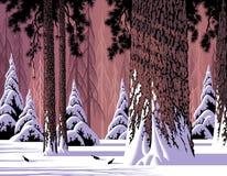 森林场面雪 免版税库存图片