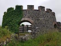 森林城堡废墟 免版税库存照片