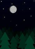 森林夜 库存照片