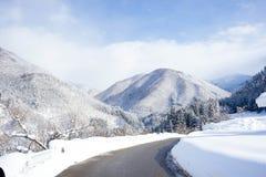 森林大雪山的 库存照片