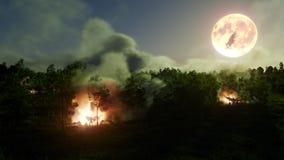 森林奥秘的Helloween巫婆与篝火概念背景例证 库存图片