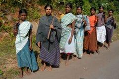 森林妇女 免版税库存图片