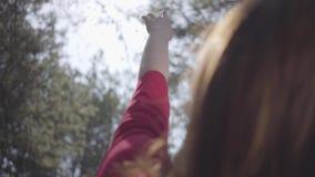 森林嫩精美夫人的优美的妇女举在天空的手 t 股票视频