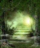 森林对天堂般的光的道路台阶 免版税库存图片