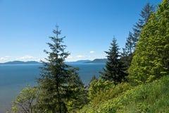 森林小山俯视的海洋和海岛 免版税库存照片