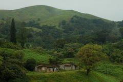 森林小山边的平房 免版税库存图片