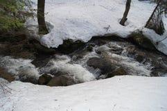 森林小河在冬天 库存照片