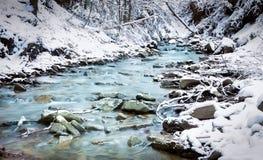 森林小河在冬天 免版税图库摄影