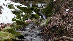 森林小河在冬天 股票视频