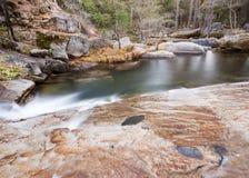 森林小河夺取与长的曝光 免版税库存照片