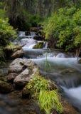 森林小河跑在岩石的,小瀑布 免版税图库摄影