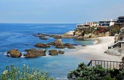 森林小海湾,拉古纳海滩,加利福尼亚。 免版税图库摄影