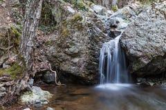 森林小的瀑布 免版税图库摄影