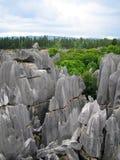森林展望期石头 免版税库存图片