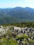森林山在西伯利亚 免版税库存图片