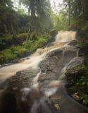 森林山小河在下雨天以后,夏天在挪威 库存照片