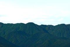 森林山 免版税库存图片