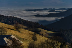 黑森林山Landscapennature树雾德国Schwarzwald Schauinsland 免版税库存照片