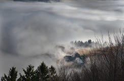 黑森林山Landscapennature树雾德国Schwarzwald Schauinsland 免版税库存图片