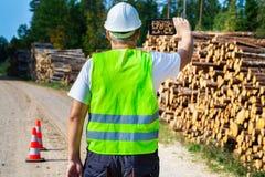 森林工作者为日志堆照相 免版税图库摄影