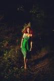 森林巫婆 库存照片