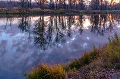 森林干草原区域洪泛区草甸  免版税库存照片