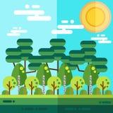 森林平的风景 免版税库存照片