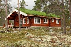 森林房子 图库摄影