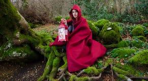 森林敞篷少许红色骑马 免版税库存照片