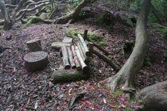森林日志长凳 免版税库存照片