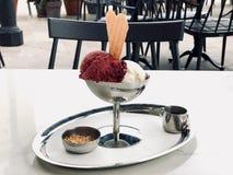 森林果子樱桃和香草冰淇淋与短号在葡萄酒金属碗有银色盘子的 免版税库存照片
