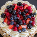 森林果子蛋糕 库存图片