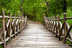 森林桥梁 免版税库存图片