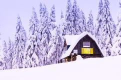 森林森林小屋的舒适房子 游人的一个小屋 冬天小屋 库存照片