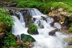 森林植被围拢的小河瀑布 免版税库存照片