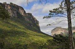 森林横向山 库存图片