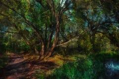 森林横向油画河 在树的树荫下 免版税库存图片