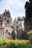 森林横向石头 免版税图库摄影