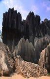 森林横向石头 免版税库存图片